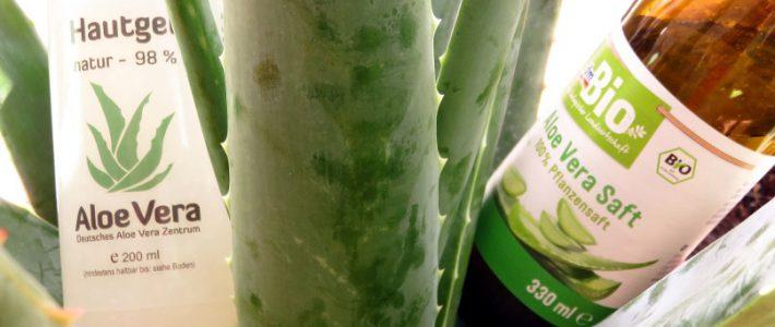 Alternativen zur Aloe Vera-Pflanze: Säfte, Gele, Öle und Co.